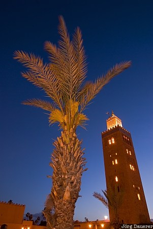 Marrakech, Marrakech-Tensift-Al Haouz, Morocco, blue hour, blue sky, flash, illumination