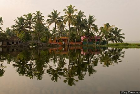 Alleppey, backwaters, blue, boats, India, morning light, palm tree