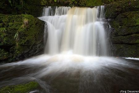 Chaslands, New Zealand, Puketiro, catlins, flowing water, south island, Southland
