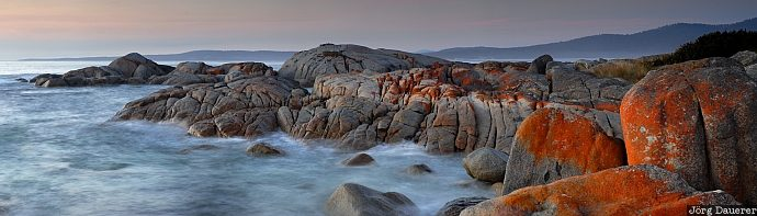 Rocks and sea, Australia, Tasmania, Bay of Fires, morning light, tasman sea, rocks, rock, coast, sea