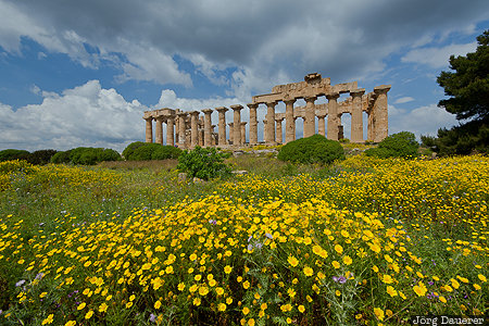 Selinunte, ITA, Italy, Marinella, Sicily, dark clouds, flowers, Greek, Temple of Hera, yellow