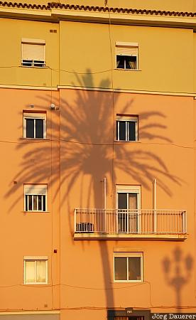 Spain, Andalusia, Cadiz, shadow, palm tree, palm, house, Spanien, Espana, Andalucia, Andalusien