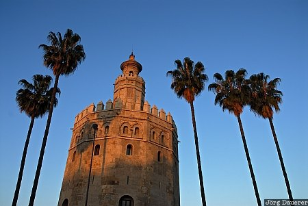 Andalusia, Seville, Spain, Torre del Oro, blue sky, morning light, palm