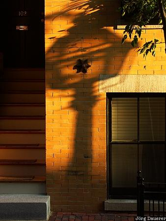 Shadow, Street lamp, Boston, Massachusetts, New England, United States, Beacon Hill