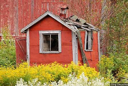 USA, Vermont, Lowell, red, yellow, ruin, farm