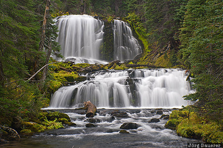 Bend, Oregon, United States, USA, Deschutes National Forest, Middle Fork Tumalo Creek, Tumalo Creek, Vereinigte Staten, OR